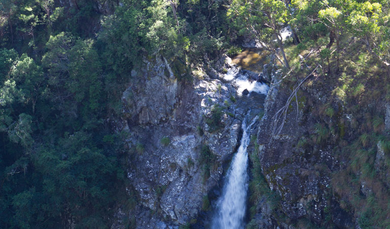 Lyrebird Falls walking track - Phillip Island Accommodation