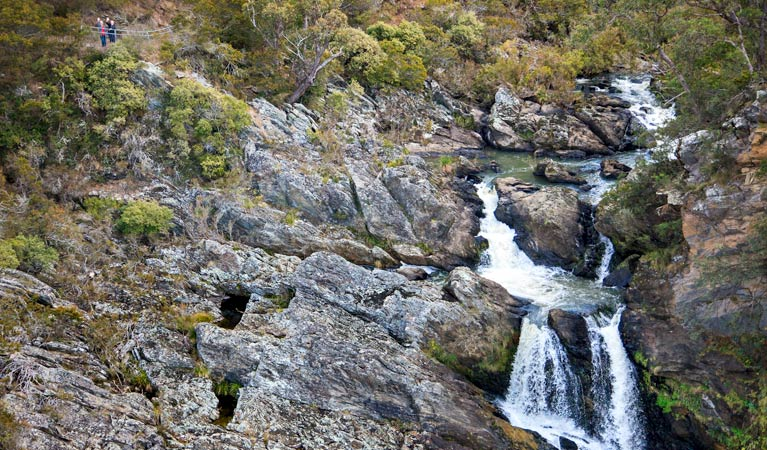 Tia Falls Walk - Phillip Island Accommodation