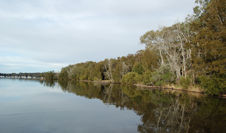 Lake Macquarie State Conservation Area - Phillip Island Accommodation
