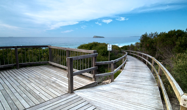 Tea Tree picnic area and lookout - Phillip Island Accommodation