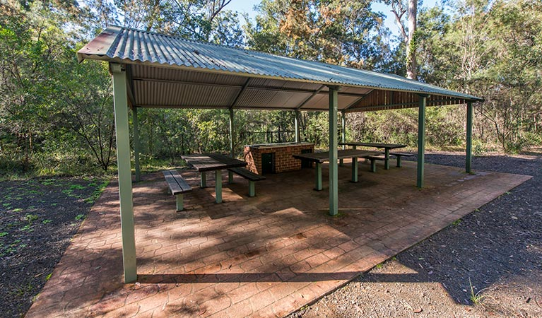 Brimbin picnic area - Phillip Island Accommodation