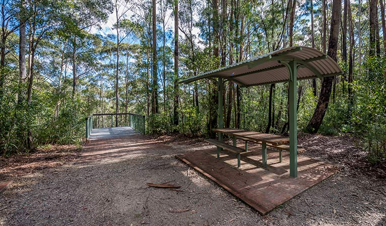 Big Nellie lookout and picnic area - Phillip Island Accommodation