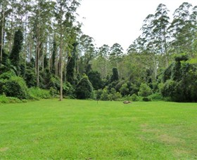 Kerewong State Forest - Phillip Island Accommodation