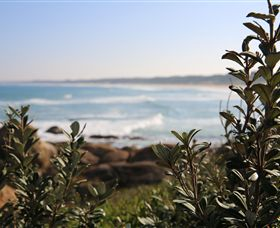 Cape Conran Coastal Park - Phillip Island Accommodation