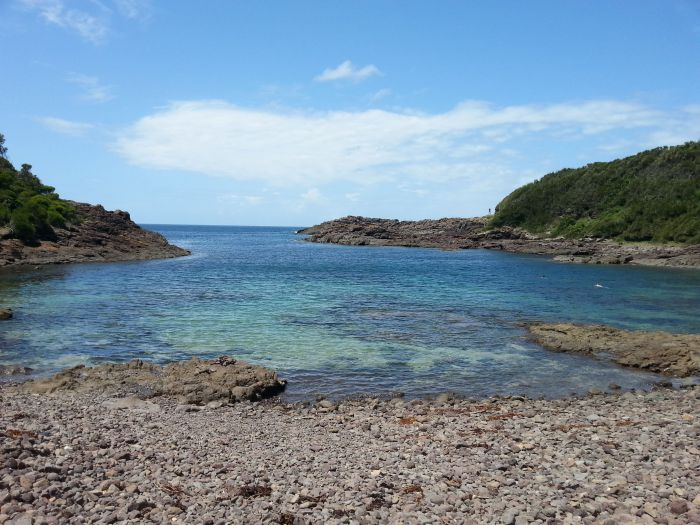 Windang Dive and Spearfishing - Phillip Island Accommodation