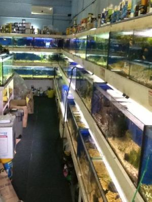 Clearwater Aquariums - Phillip Island Accommodation
