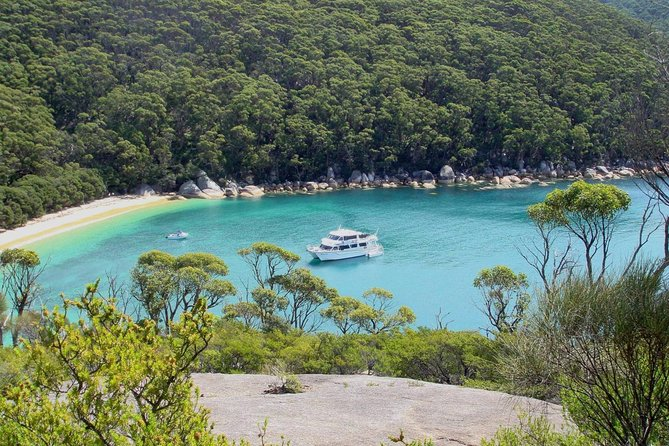 Wilsons Promontory Full Day Cruise - Phillip Island Accommodation