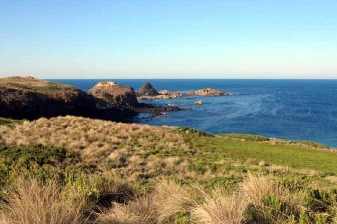 Phillip Island Tour Including Cape Woolamai Walking Trail - Phillip Island Accommodation