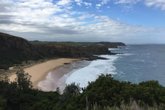 1 Day Phillip Island Bass Coast Walk Sightseeing and Penguins Tour - Phillip Island Accommodation
