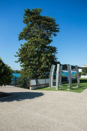 A Cup of Culture in Mackay - Phillip Island Accommodation