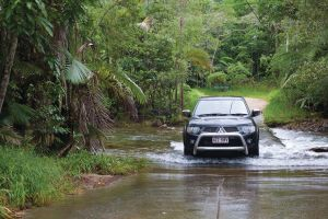 The Pioneer Valley and Eungella National Park - Phillip Island Accommodation