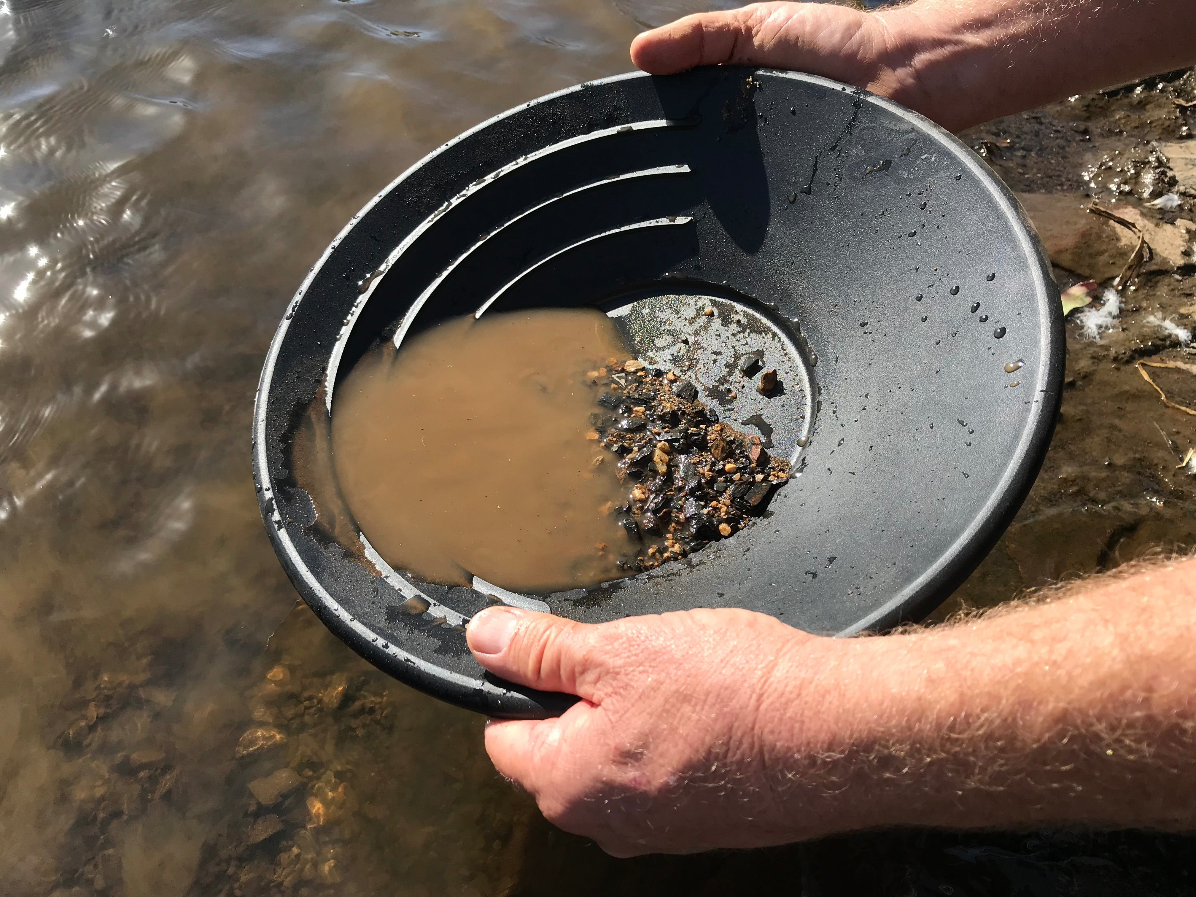 Tuena Panning for Gold - Phillip Island Accommodation