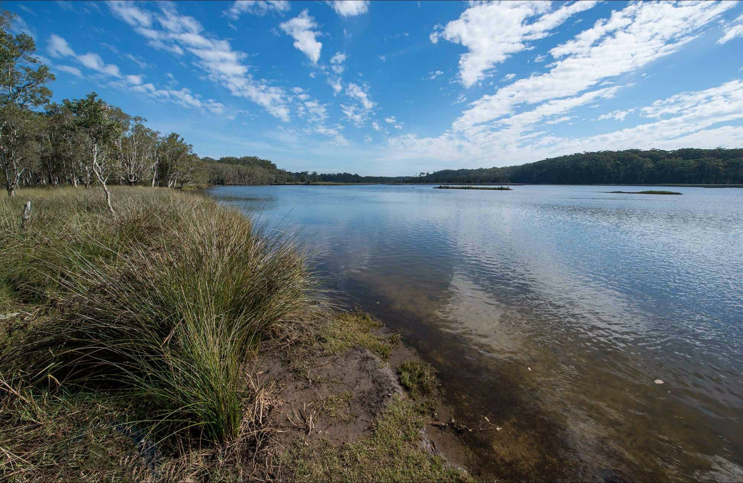 Lake Innes Nature Reserve - Phillip Island Accommodation