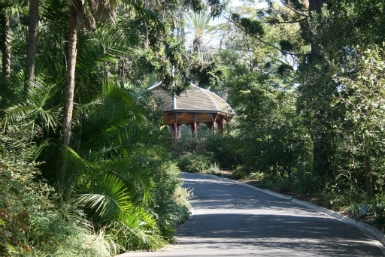 Royal Botanic Gardens Victoria - Phillip Island Accommodation