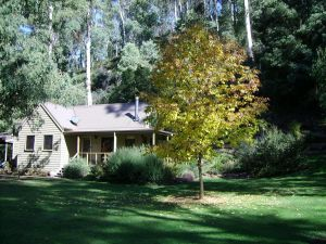 shady brook cottages - Phillip Island Accommodation